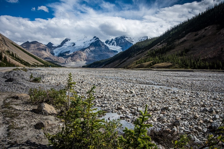Icefields Parkway (33668657781)