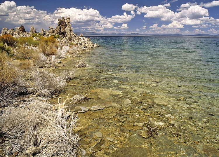 Lakeside of Mono Lake