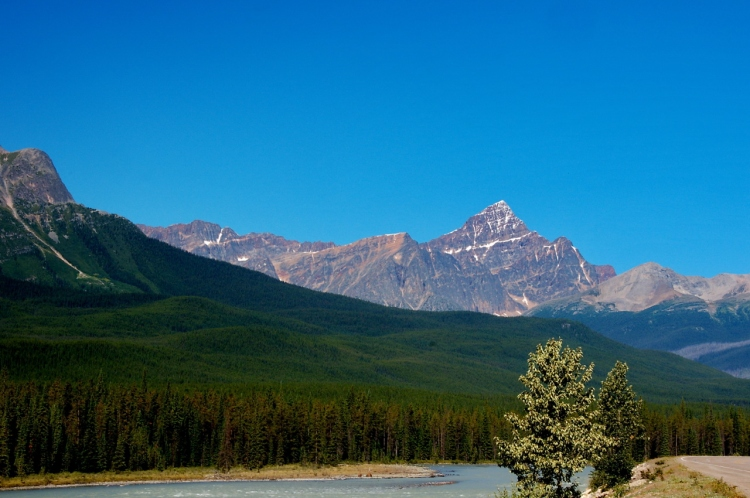 Mount Edith Cavell in Distance