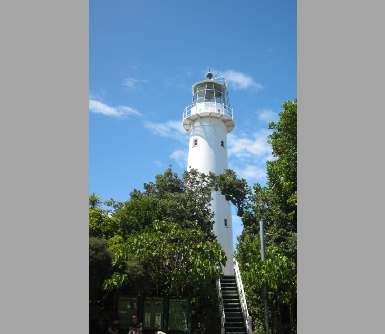 Tiritiri Matangi lighthouse emerging from trees