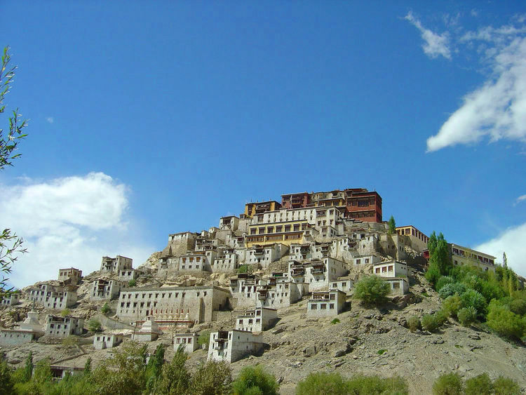 Thiksey Gompa (image)