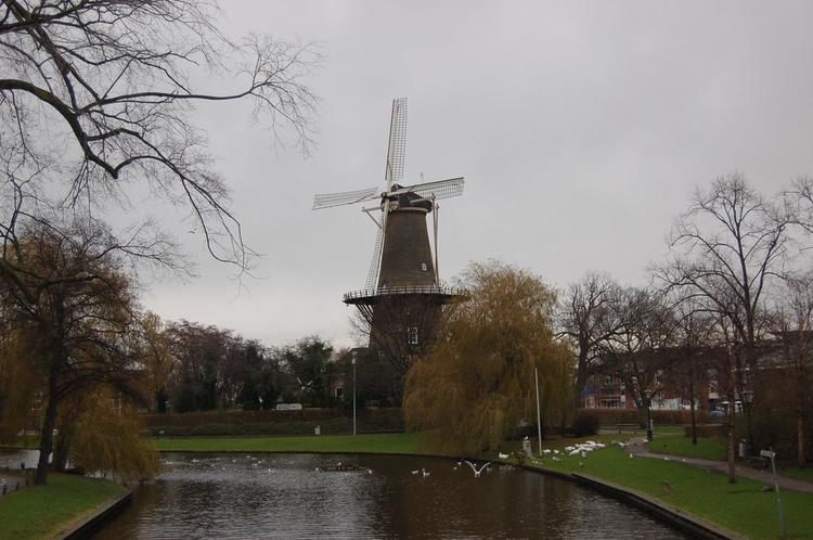 a windmill in Leiden (image)