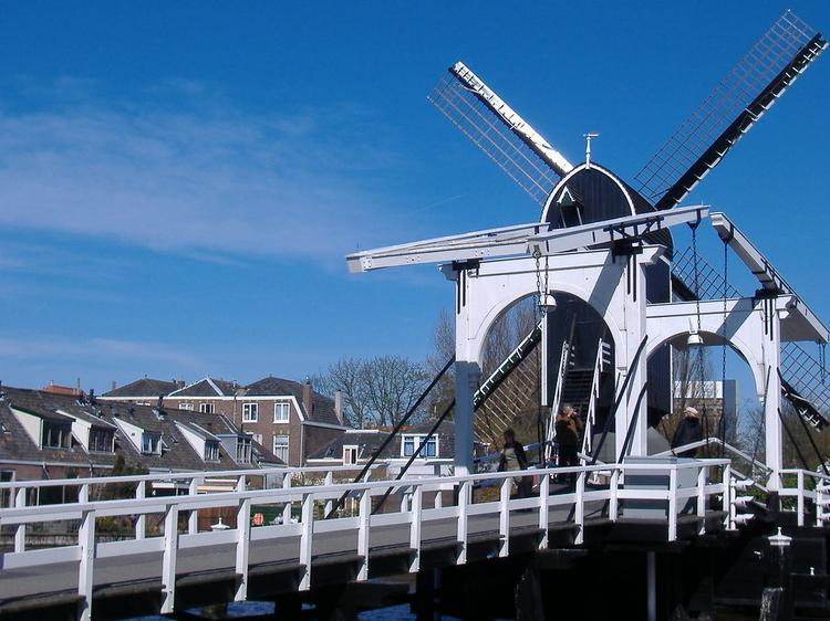 Windmill and Bridge in Leiden (image)