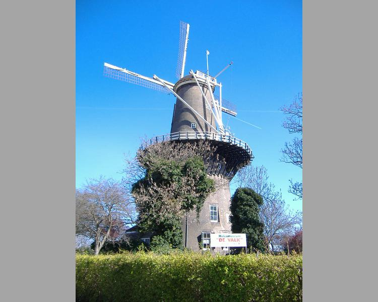 Windmill in Leiden (image)
